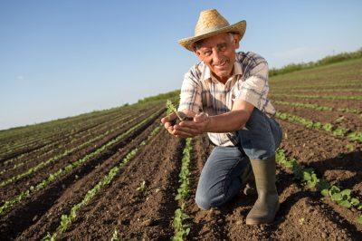 Agriculteur dans son champs